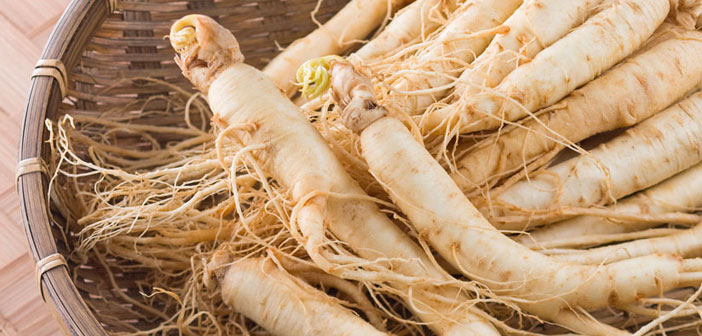 benefits of ginseng for skin